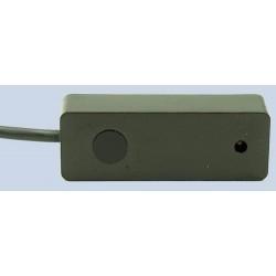 CORV-IRR-31BL