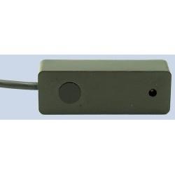 CORV-IRR-56